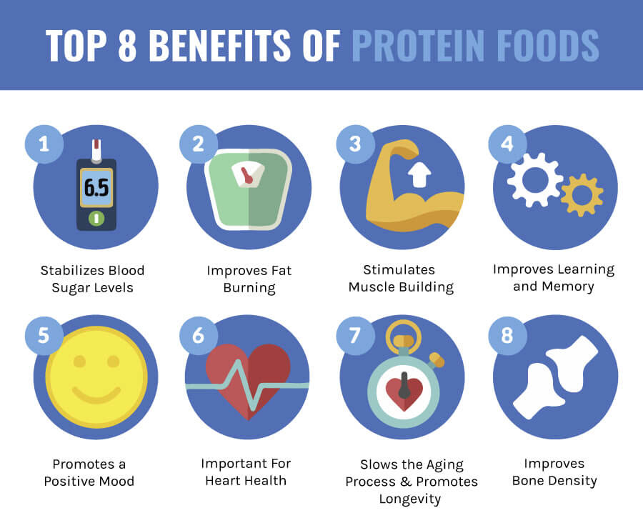 benefits of protein foods